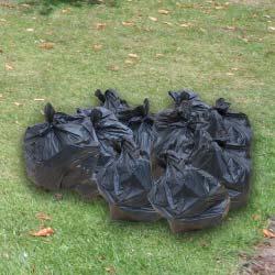 10-bin-bags
