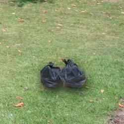 2-bin-bags