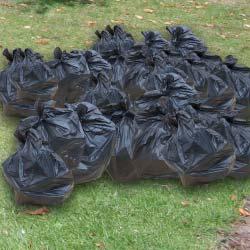 30-bin-bags