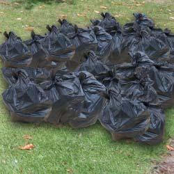 40-bin-bags