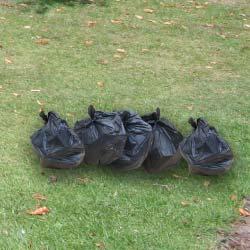 5-bin-bags