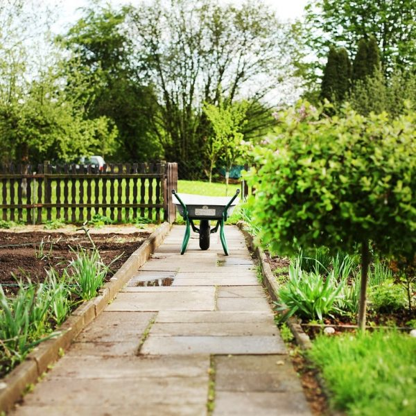 Clear Garden Waste Tips