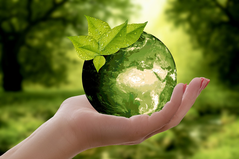 Advantages and Disadvantages of Recycling Waste | Snappy Rubbish ...
